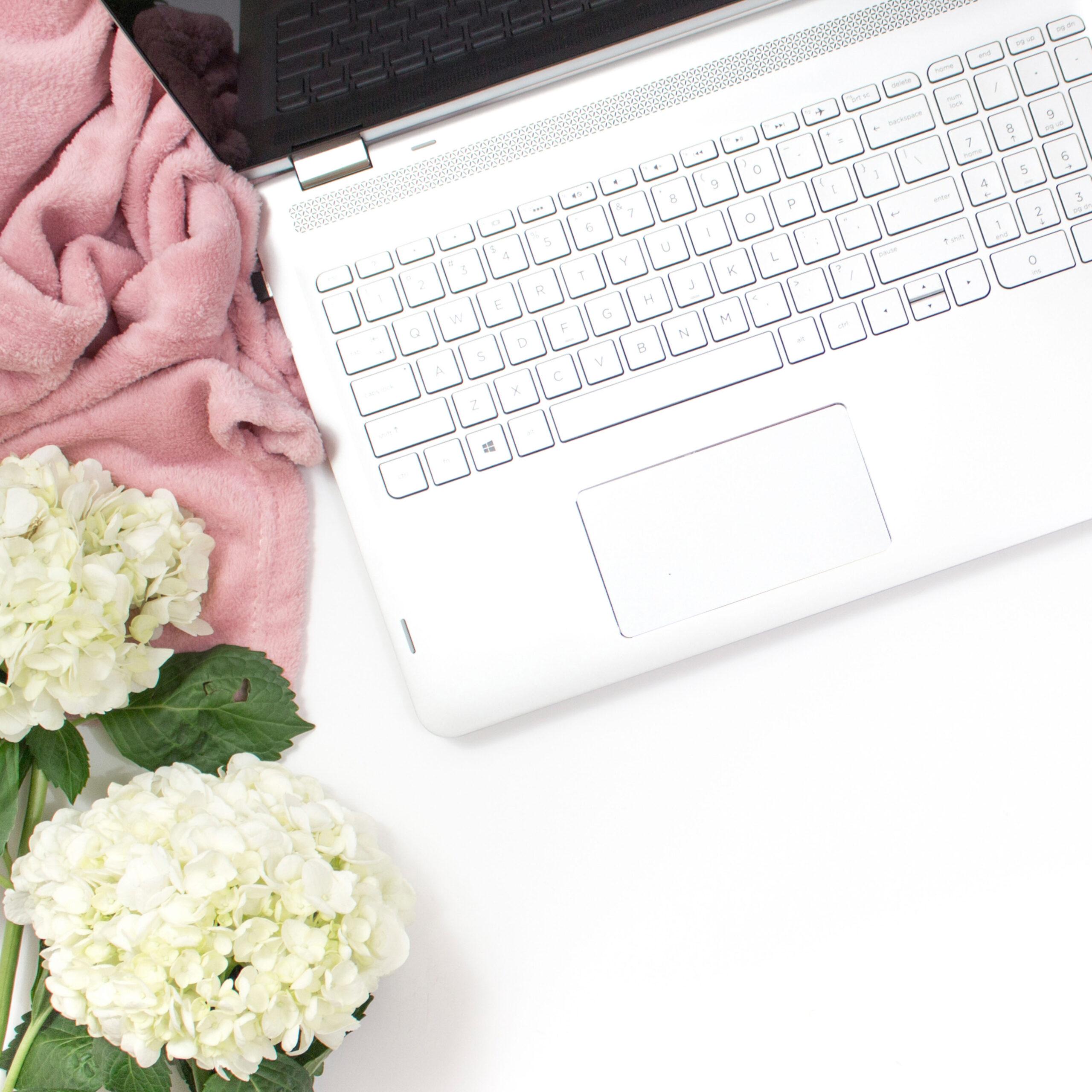 zebra soul art-work online-white laptop